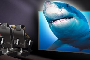 Shark Screen